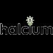 Halcium Group LLC