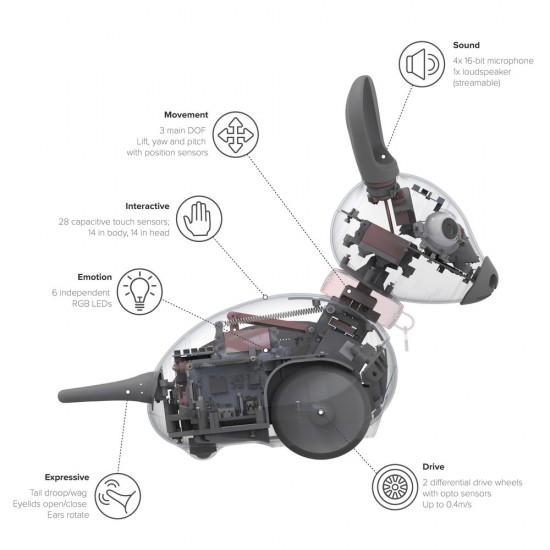 Autonomous robot MiRo-E