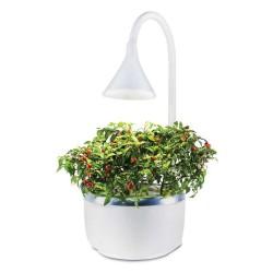 Smart garden SproutsIO