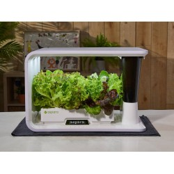Intelligent gardener Aspara AS1001